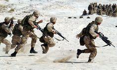 Q10 benefits Gulf War veterans |