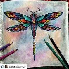 #Repost @amandaagrizi ・・・ Depois de pronto! #florestaencantada #johannabasford #hobbie #mundocoloridinho #jardimsecreto #minha_florestaencantada Dragonfly Painting, Dragonfly Wall Art, Dragonfly Tattoo, Dragonfly Images, Butterfly Drawing, Dragonfly Drawing, Tatoo Henna, Johanna Basford Coloring Book, Dragon Pictures