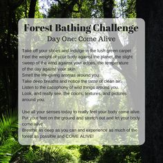 Our Forest Bathing Facebook Group is having a great time with this 5-day challenge to get outside into nature, even just for 15 minutes. Day one is about COMING ALIVE! Join us!