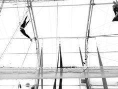 Trapeze school New York in DC! Classes fill up fast! Via @Meg Biram
