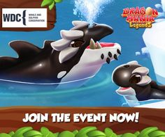 Gameloft Dragon Mania Legends orca dragon. Play to save whales and dolphins.