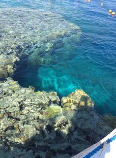 Sheikh Coast Diving & Kiting Center