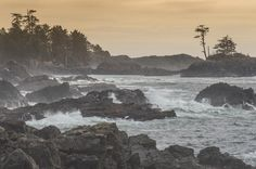 Wild Pacific Trail, Ucluelet: See 1,874 reviews, articles, and 906 photos of Wild Pacific Trail, ranked No.1 on TripAdvisor among 27 attractions in Ucluelet.