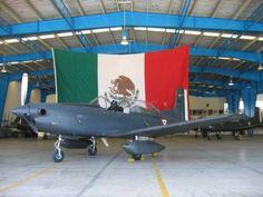 MÉXICO ARMADO - En pro de la cacería responsable, el tiro deportivo y la…