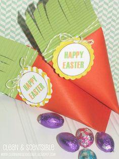 cajas de zanahoria placer para Pascua.