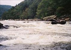 French Broad River - first white water rafting trip of my life.  Incredibly cold but incredibly fun.