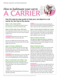 Client Handout: Use this step-by-step guide to educate cat owners about how to help their cats adjust to a cat carrier for trips to the veterinarian. #Veterinary - dvm360