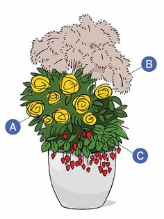 Blend edibles with the floribunda shrub named for famed chef Julia Childs. A: Julia Childs rose. B: Bronze fennel. C: Alpine strawberry