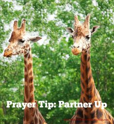 Prayer Tip: Partner Up