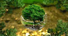Tipos De Impacto Amb Tipos De Impacto Ambiental Por Actividades Humanas World Environment Day Environment Day Environment
