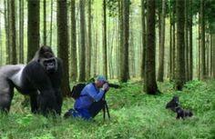 「いい絵撮れてる?」動物カメラマン達が遭遇したまさかの状況に心が和む(画像9枚)   mofmo