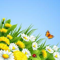 Spring (4) [átalakított]