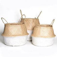 Collapsible Basket Trio | Salt Living