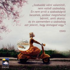 Osho idézet a szabadságról. A kép forrása: Édesvíz Kiadó Status Quotes, Life Quotes, Bianca Petry, Truth Of Life, Happy Birthday Wishes, Osho, Good Thoughts, Bullying, Funny Quotes