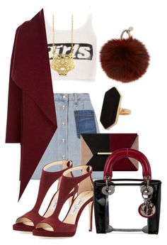 """""""Untitled #105"""" by cocoabeautyandfashion ❤ liked on Polyvore featuring Alexander Wang, rag & bone, Harris Wharf London, Dune, Jimmy Choo, Jaeger, Yves Salomon, Kenzo and Christian Dior"""