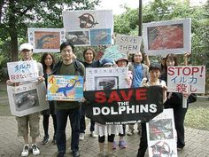 Japanese voices against the Taiji dolphin hunt