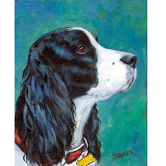 English Springer Spaniel Dog Print by Dottie by DottieDracos, $12.00