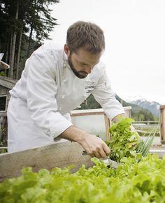 Fresh veggies and herbs straight from our very own garden at Clayoquot Wilderness Resort. www.wildretreat.com #garden #wildretreat