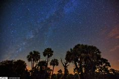 Big Pine Key, FL | One of the 13 Best Places In The U.S. To Star Gaze