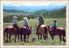 Horseback riding Colorado style