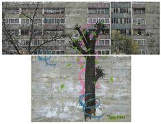David Hepher Three Trees 2010-11