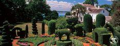 Green Animals Topiary Garden | Newport Mansions