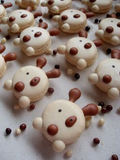 Macarons chiens / Dog macarons