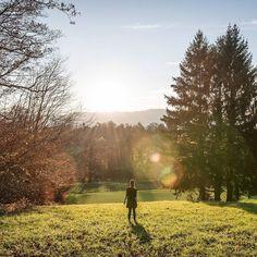 Herbstlichter....<3  #happyweekend #autumnlights #goldenhour #zürich #herbstliebe