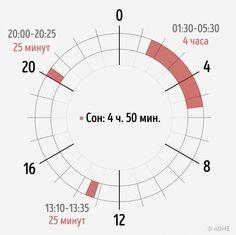 Снедавних пор ясплю 2–4 часа всутки. Высыпаюсь, чувствую себя здоровым, арабочая продуктивность навысоте. Специально для читателей AdMe.ru расскажу, как ядотакого докатился ичерез что прошел.