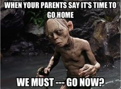 We must -- go now? #smeagol #lord of the rings #gollum #funny #meme