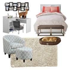 """Best Pet Friendly Room!"" by kstyle661 ❤ liked on Polyvore featuring interior, interiors, interior design, home, home decor, interior decorating, Pier 1 Imports, Monarch Specialties, Mitchell Gold + Bob Williams and Adeco"