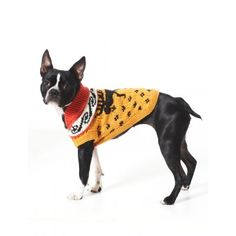 Free Intermediate Pet's Coat Knit Pattern