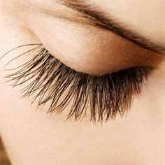 Home Remedies To Enhance Eyelash Growth - Natural Treatments & Cure To Enhance Eyelash Growth | Search Herbal Remedy