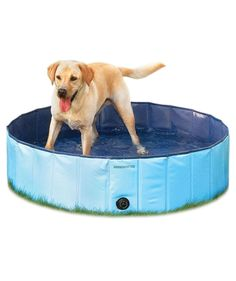 No backyard pool for your pet to seek solace from the sun? This splash pool is the ideal alternative, made from puncture-proof PVC material with reinforced siding to contain the waves. A side drainage plug allows you to empty the pool with ease, and it folds up for easy travel. No inflation necessary. Ideal for dogs 20 to 110 lbs.