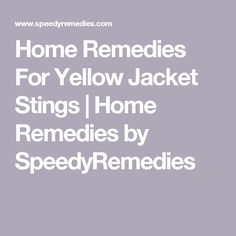 Home Remedies For Yellow Jacket Stings   Home Remedies by SpeedyRemedies