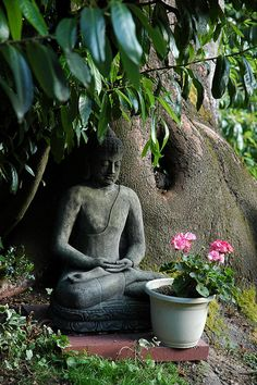 """Garden Buddha, statue, pink flowers, meditation position under a large tree with pink flower offering, Wedgwood, Seattle, Washington, USA    """"Don't count every hour in the day, make every hour in the day count."""" -Unknown"""
