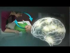 Serve & Return Interaction Between Adult and Child Shapes Brain Circuitry
