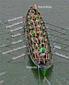 Diccionario en euskera del remo. ¿Cómo se llaman los puestos que ocupa la tripulación de una trainera?