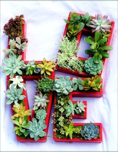 succulent planter letters. Love this idea for the patio