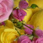 GUERLAIN+Aqua+Allegoria+Bergamote+Calabria:+Recenze