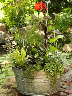 How to Create a Water Garden in a Weekend. BHG article shows how to create a water garden in a galvanized tub.