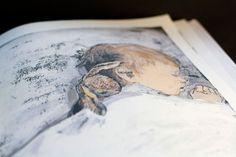 The Velveteen Rabbit, Reimagined with Uncommon Tenderness by Beloved Japanese Illustrator Komako Sakai – Brain Pickings