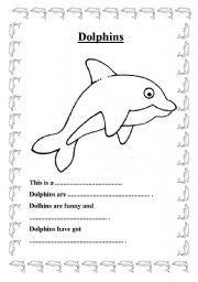 Basic Dolphin Anatomy Diagram and Worksheet Other