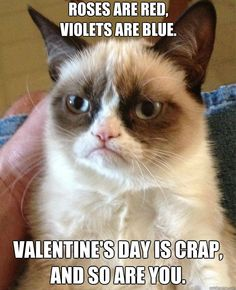 roses are red violets are blue valentines day is crap an - Grumpy Cat