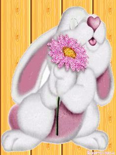 ca bouge - Page 69 Angel Pictures, Gif Pictures, Cheer Up Funny, Bisous Gif, Happy Weekend Quotes, Cute Good Night, Bunny Images, Emoji Symbols, Emoji Images