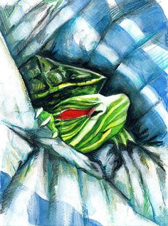 Turtle In A Blanket Print By Rene Capone