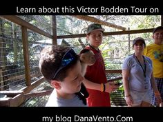 #Travel to #Roatan and get in on the #Monkey Business #tourism #TravelBlogger #TravelBug #family #destination #vacation #danavento #privatetour #VictorBodden