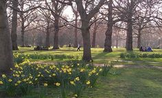 Green Park - London
