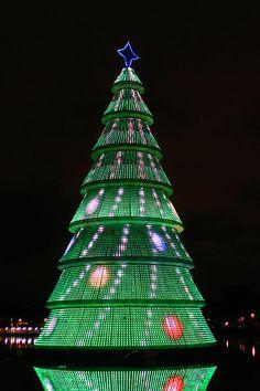 Christmas Tree in Belo Horizonte, Brazil