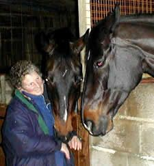 Natural Horse Magazine / Essential Oils Used for Overcoming the Past - by Lyn Palmer